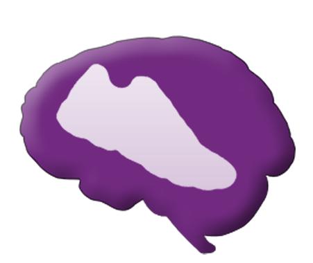 Race for Epilepsy