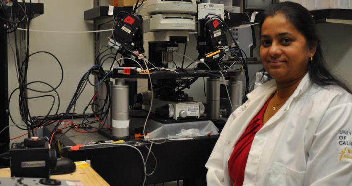 Dr. Viji Santhakumar in her lab