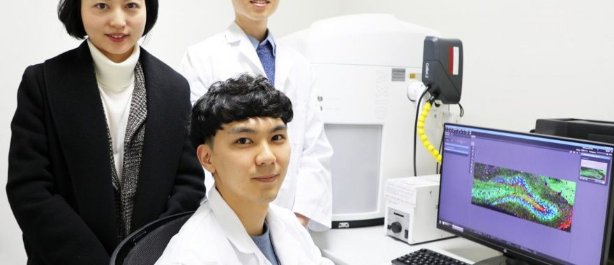 Professor Ji Won Um (left) as well as combined master's and doctoral dual degree program students Seungjoon Kim (front), and Hyeonho Kim (back) in the Department of Brain and Cognitive Sciences at DGIST