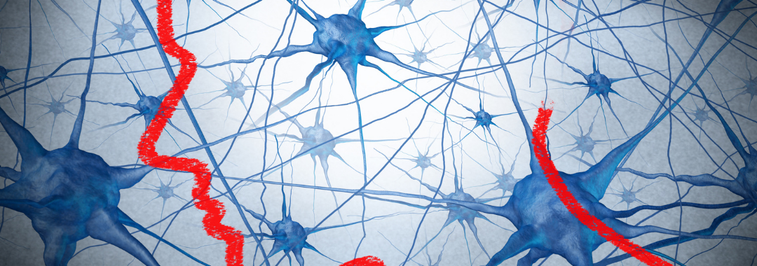 a red pencil draws the outline of a human head over a graphic of neurons